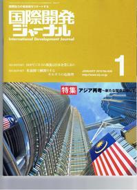 kokusaikaihatujounal201001.JPG